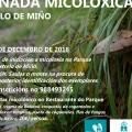 XORNADA MICOLÓXICA (CASTRELO DE MIÑO)