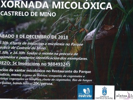 JORNADA MICOLÓGICA EN CASTRELO DE MIÑO